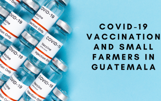 text: COVID-19 Vaccination and Small Farmers in Guatemala. with vaccine bottles