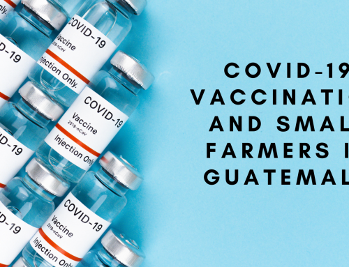 COVID-19 Vaccination and Small Farmers in Guatemala